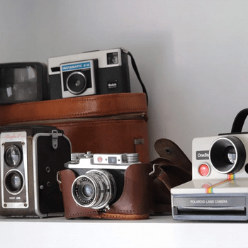 Quirky collections - Vintage cameras