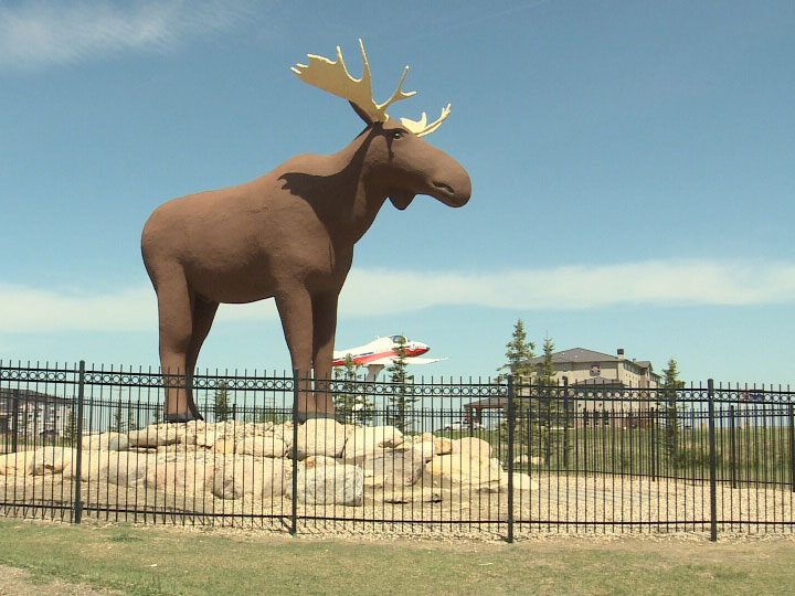 Roadside attractions across Canada - Mac the Moose