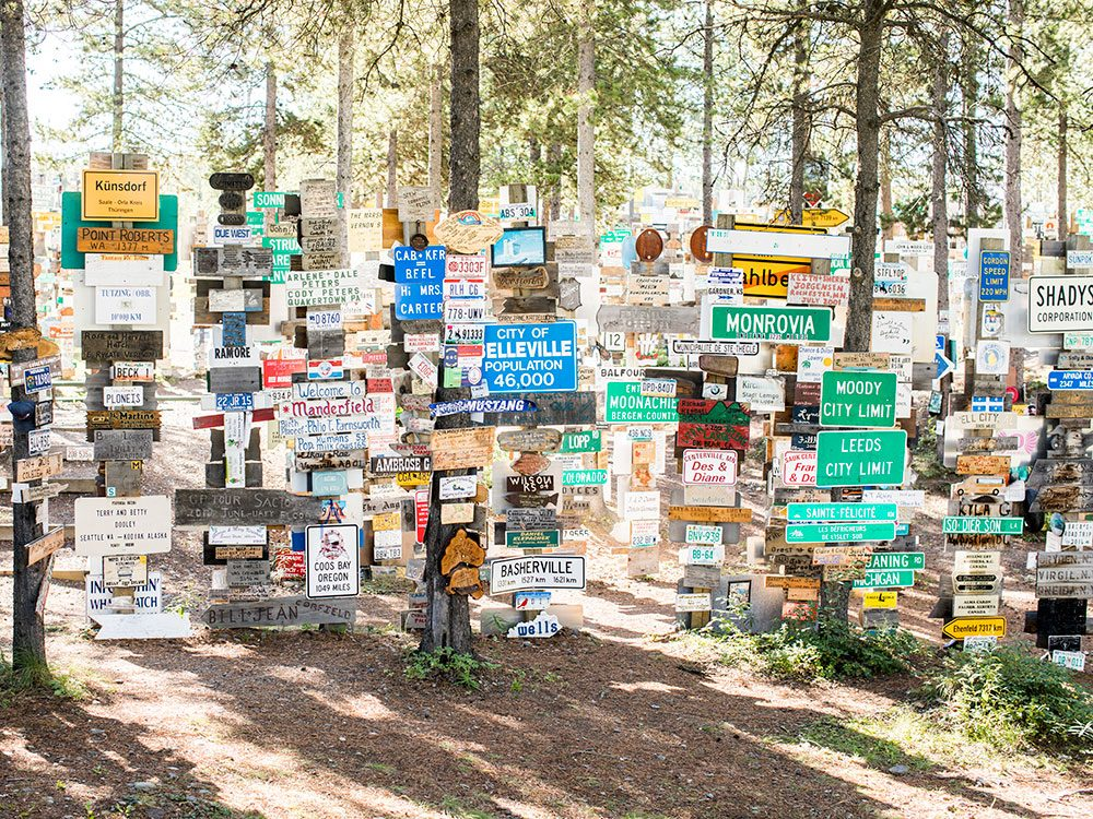 Roadside attractions across Canada - Signpost Forest
