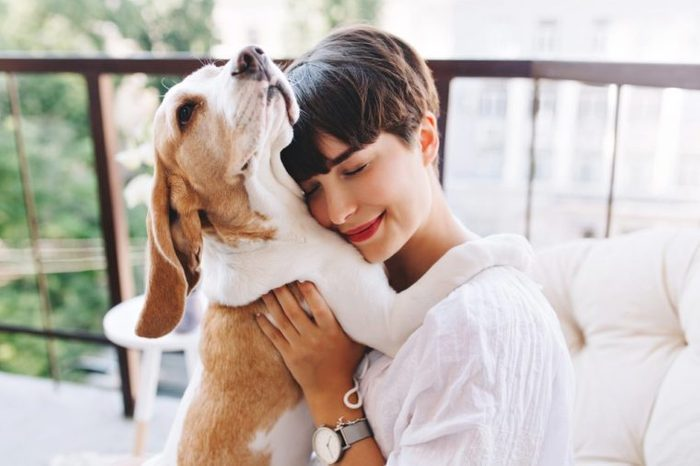 Close-up portrait of pleased girl with short brown hair embracing funny beagle dog with eyes closed. Smiling young woman in white shirt enjoying good day and posing with pet on terrace.