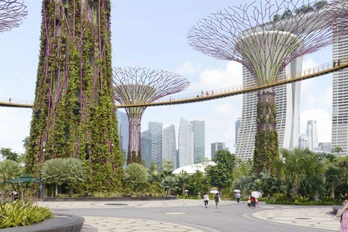 Gardens by the Bay, Singapore, Singapore. Architect: Grant Associates, 2012.