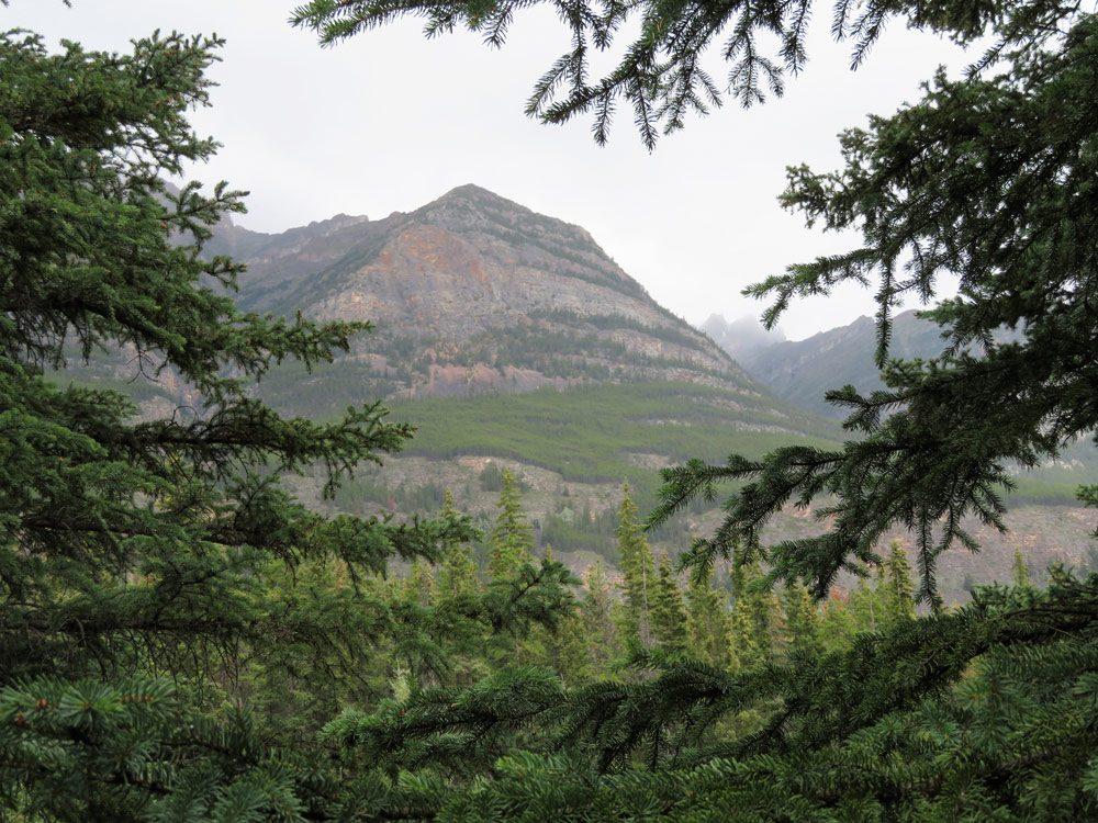 MountKerkeslin in Jasper National Park