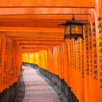 Travelling to Japan - Fushimi-Inari Shrine