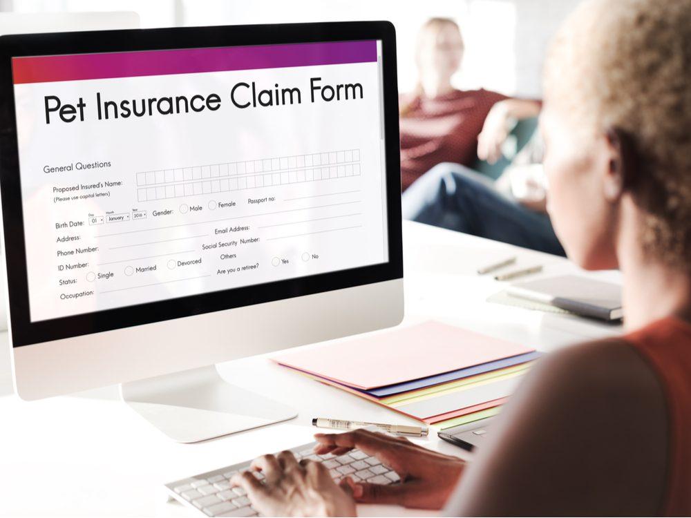 Pet insurance claim form