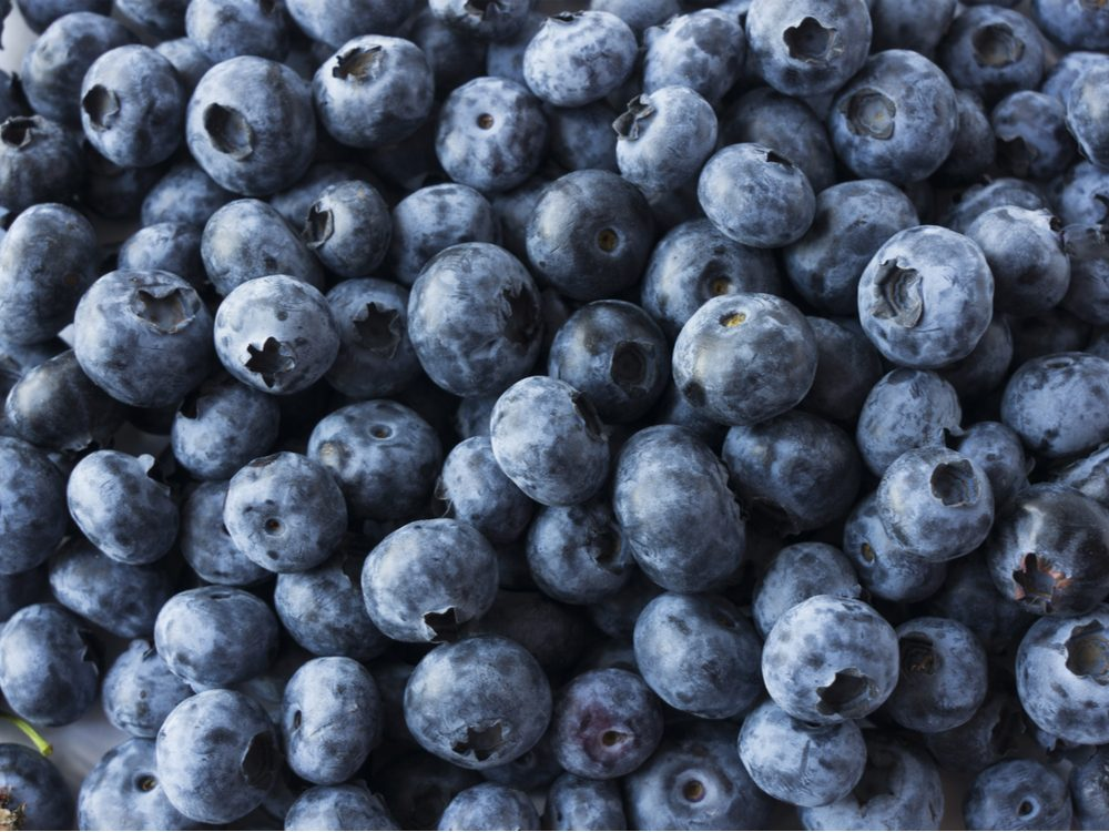 stay focused blueberries