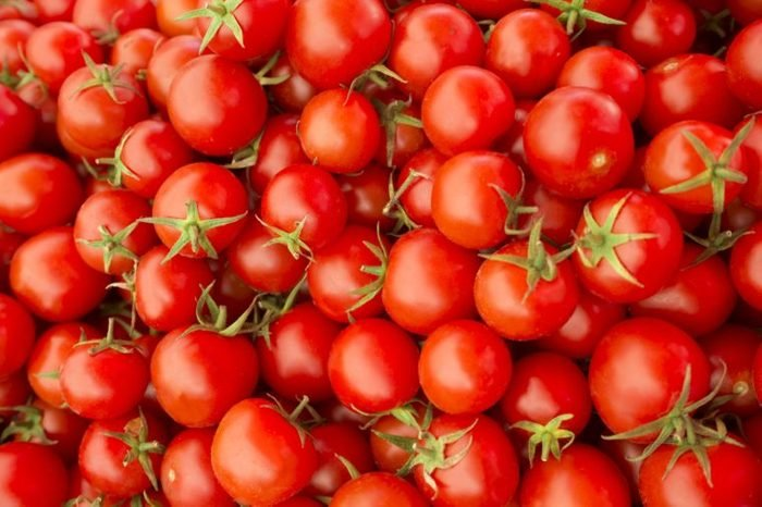 Delicious red tomatoes. Summer tray market agriculture farm full of organic vegetables It can be used as background. (selective focus)