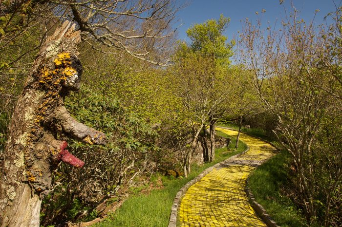 The abandoned Yellow Brick road in the Land of Oz theme park, North Carolina
