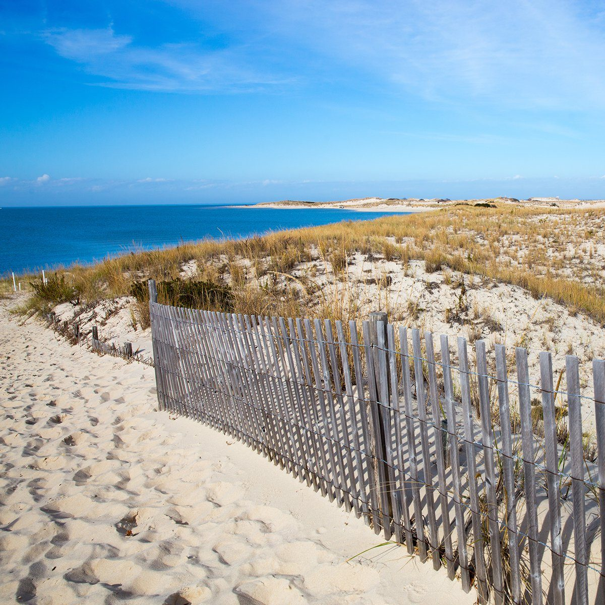 Peaceful Atlantic Ocean seashore view at Cape Henlopen in the State of Delaware a popular destination for relaxation and history.