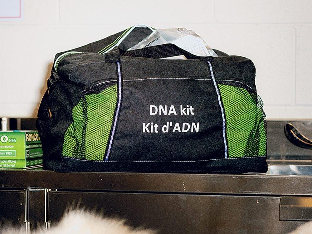 A DNA kit