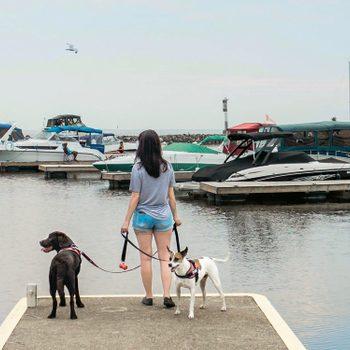 Caroline, along with Gryffin and Zak, enjoying the view at Lake Nipissing in North Bay, Ontario