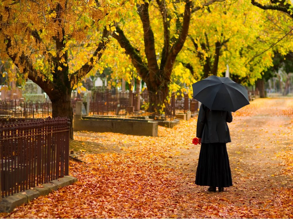 funny tweets umbrella at funeral