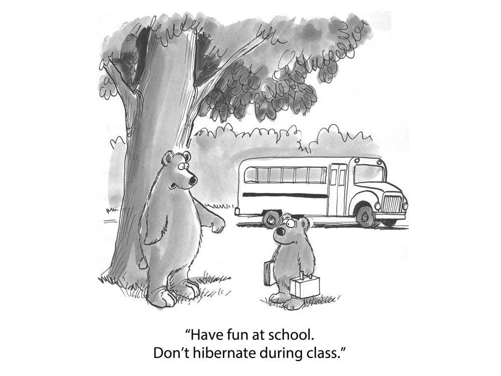 kids jokes bears