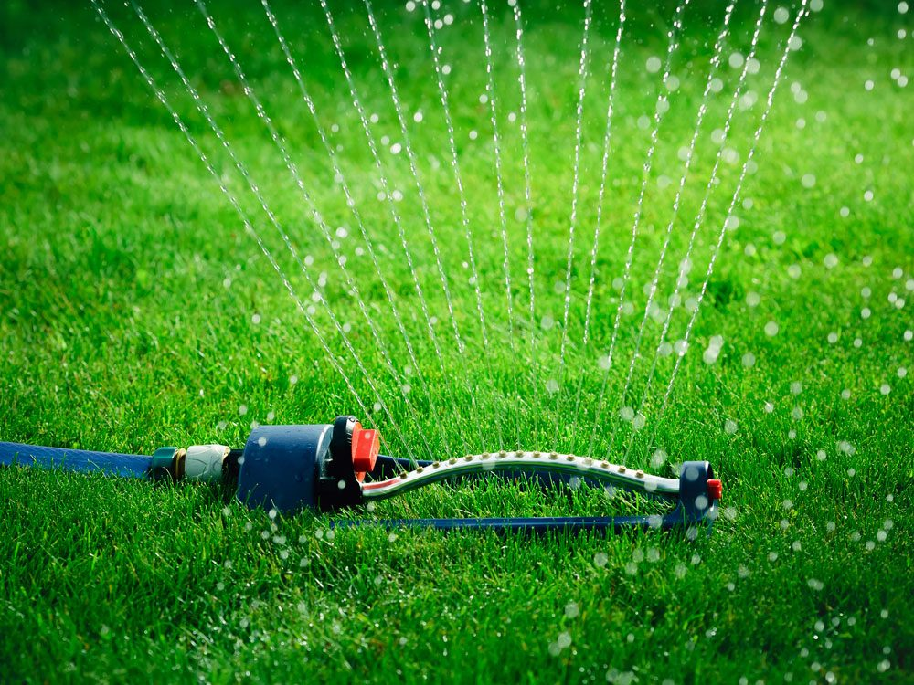 Save on summer utility bills - watering the lawn