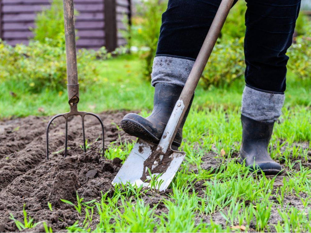 Working in soil in backyard garden