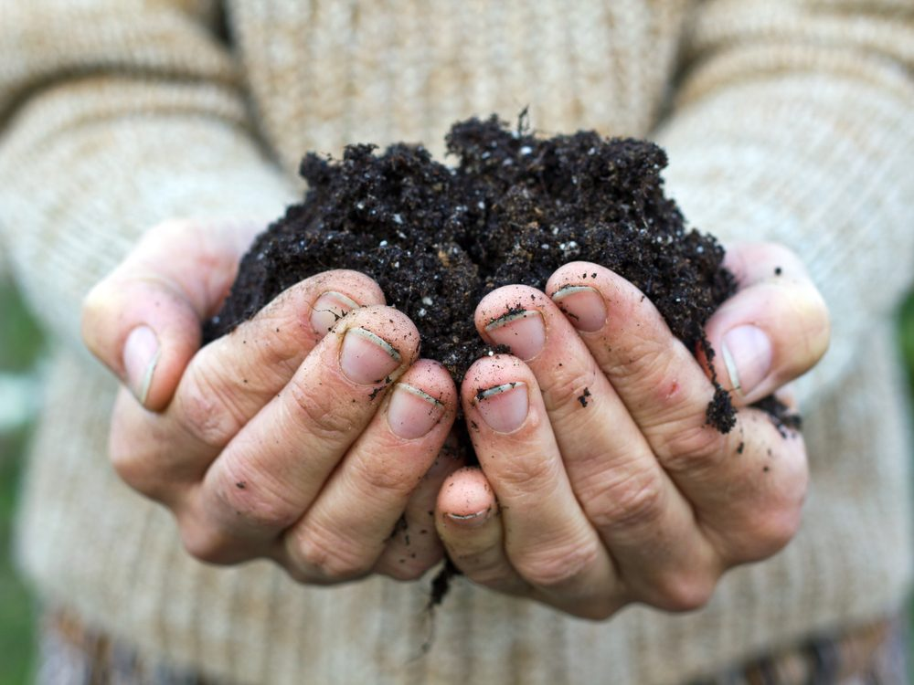 Holding fertilized soil