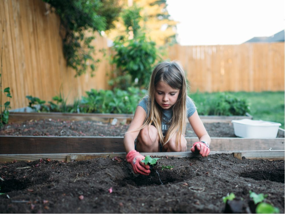 Little girl planting a flower in her garden