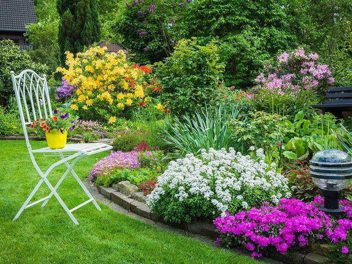 Starting a garden - pretty home garden
