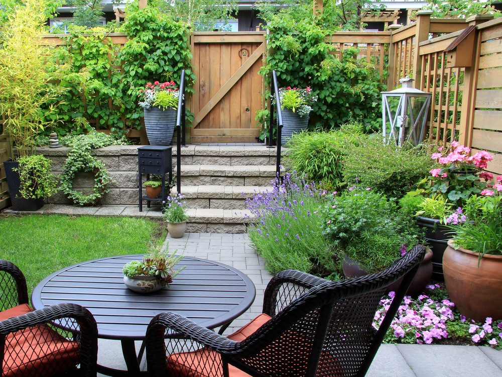 13 Things You Should Know Before Starting a Garden