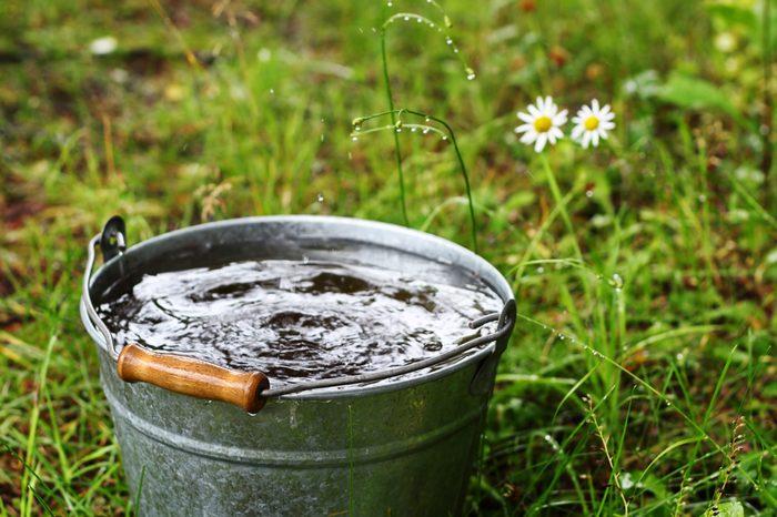 Bucket with rain water outdoors