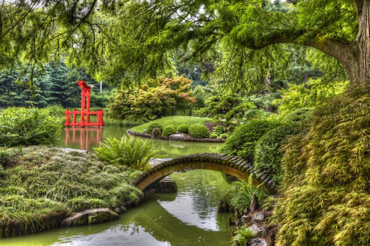 HDR picture of Japanese Garden in the Brooklyn Botanic Garden, New York City, U.S.A.