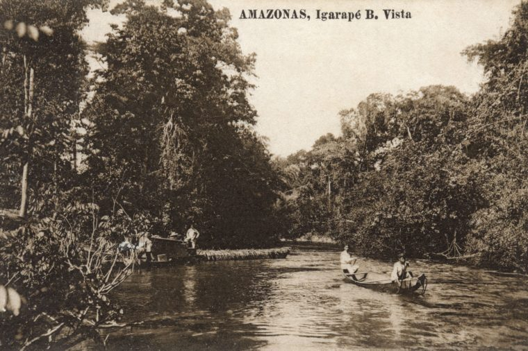 old branco river