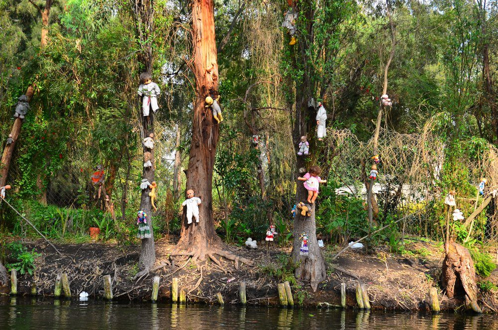 Xochimilco is an island of abandoned dolls. View from the boat.