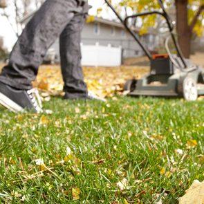 Fall yard maintenance - Leaf Lawn Fertilizer