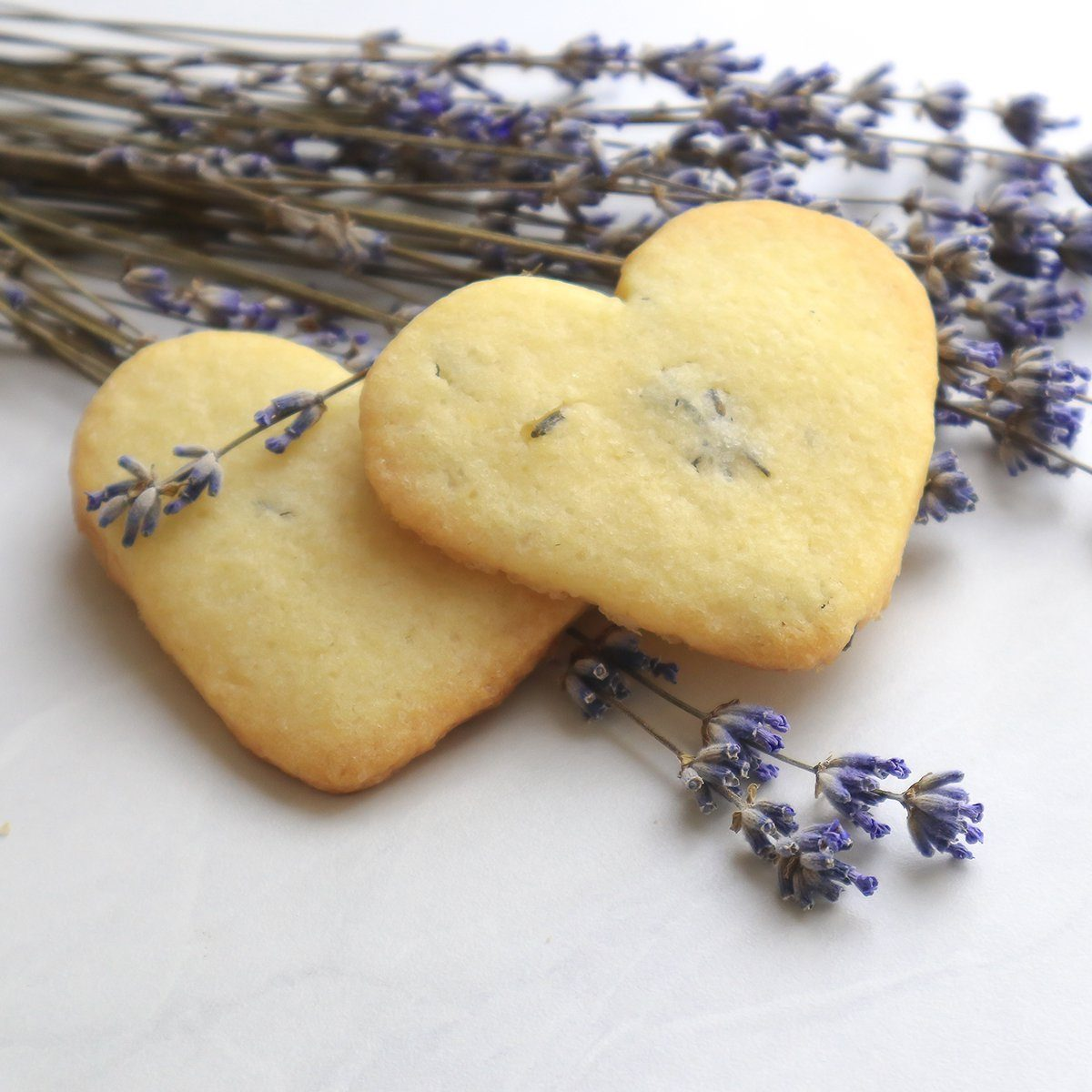 Fresh homemade lavender cookies on light background