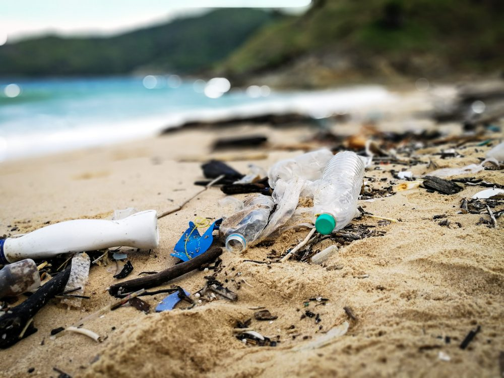 Pollution and plastic on beach