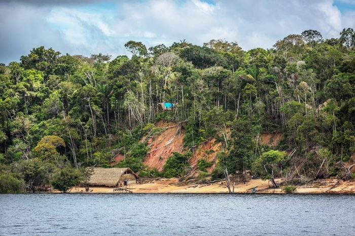 A deforestation area in the edge of the Amazon River with a traditional indigenous house in Amazon state in Brazil
