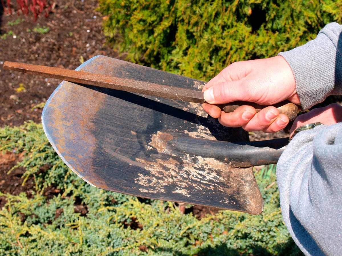 Cleaning up garden tools