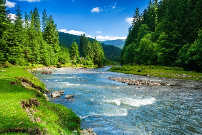science quiz questions - landscape with mountains, forest and a river in front. beautiful scenery