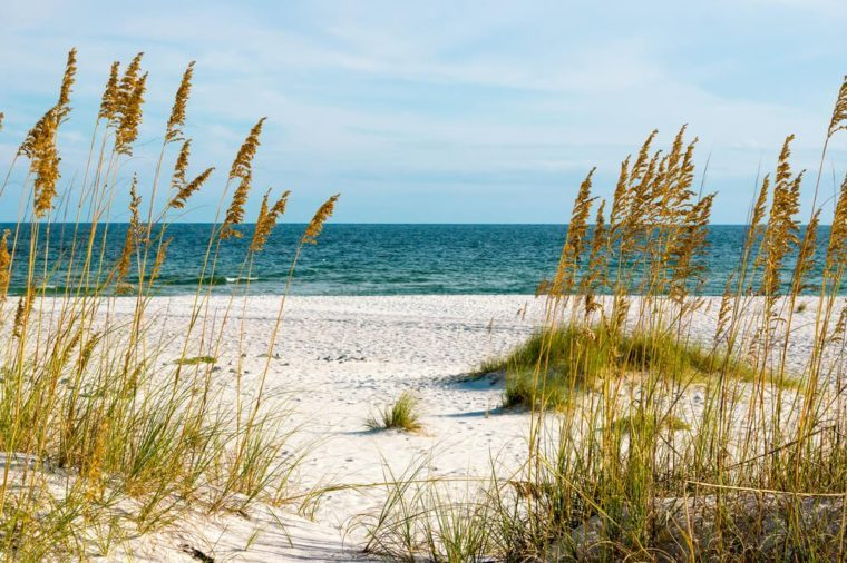 A scene on the Gulf Coast of Alabama.