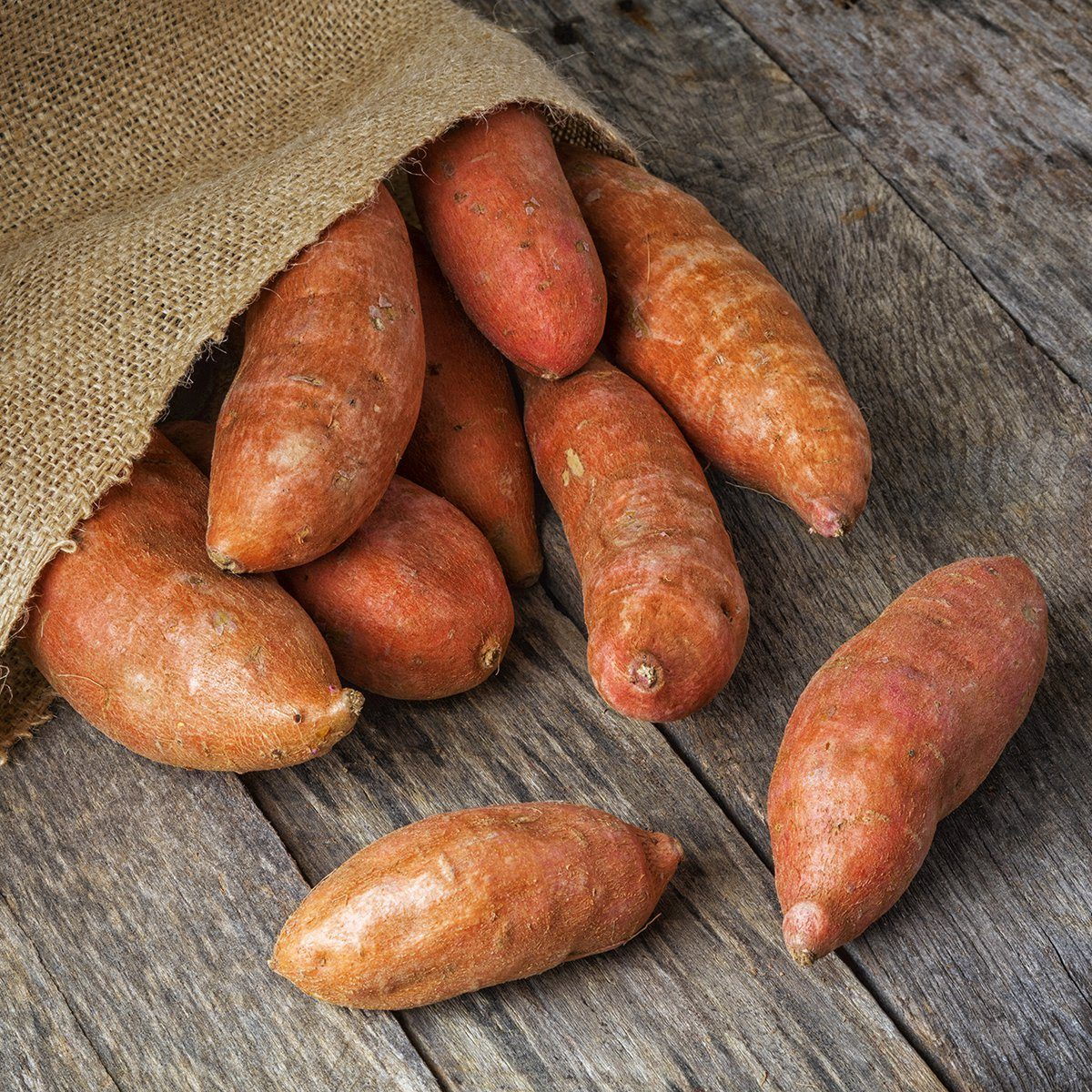 Freshly harvested organic sweet potatoes spilling from a burlap bag onto a natural weathered wood table.