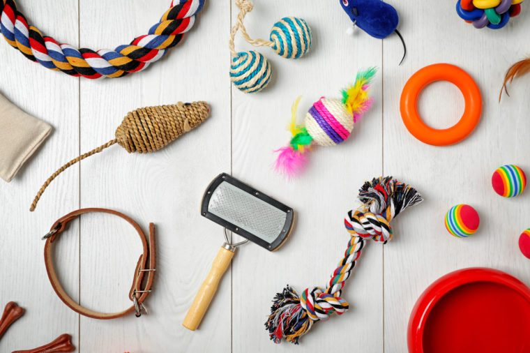 Flat lay composition with accessories for dog and cat on wooden background. Pet care