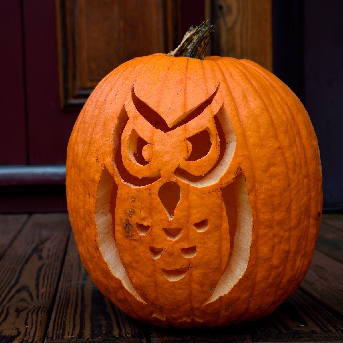 Owl pumpking carving