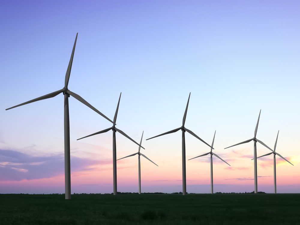 Supporting wind power is one way to help stop climate change.