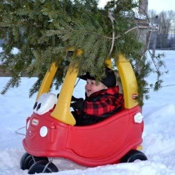 25 of the Funniest Family Christmas Photos