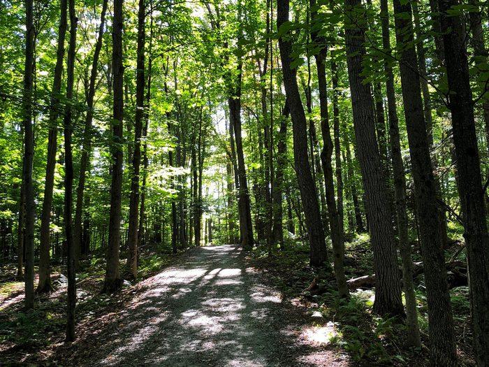 Beckett Woods, Sherbrooke, Quebec