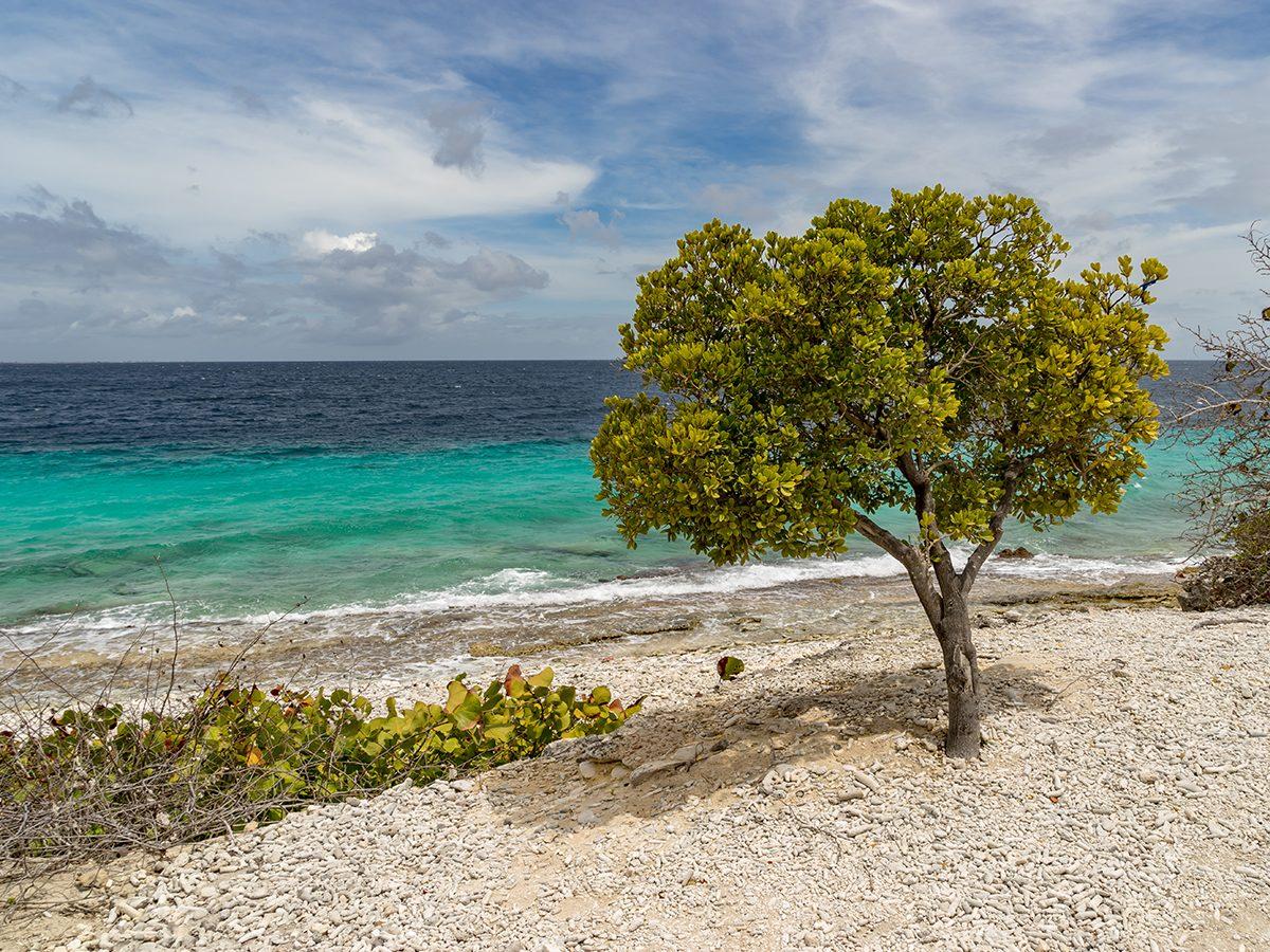 Best Caribbean beaches - 1,000 Steps Beach, Bonaire