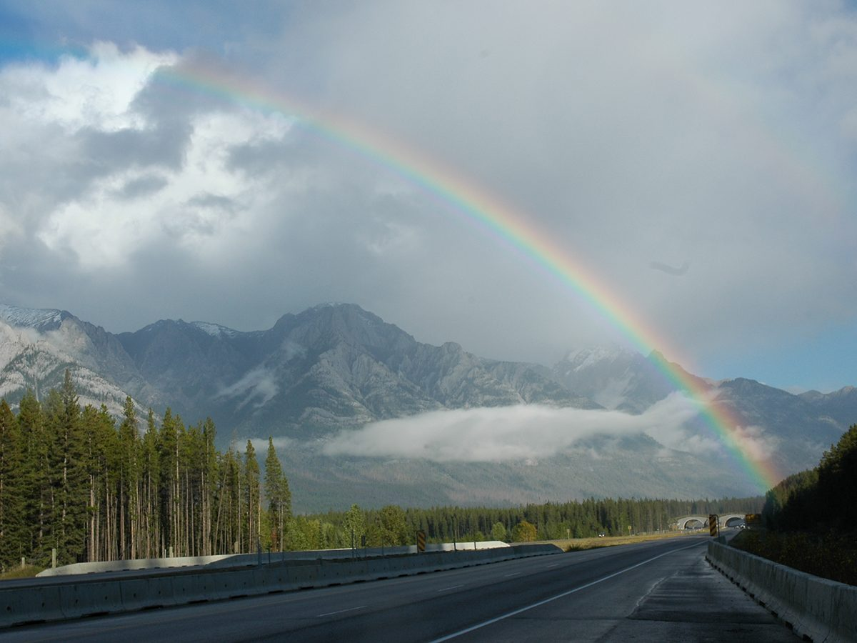 Best rainbow photography - Kananaskis Highway rainbow