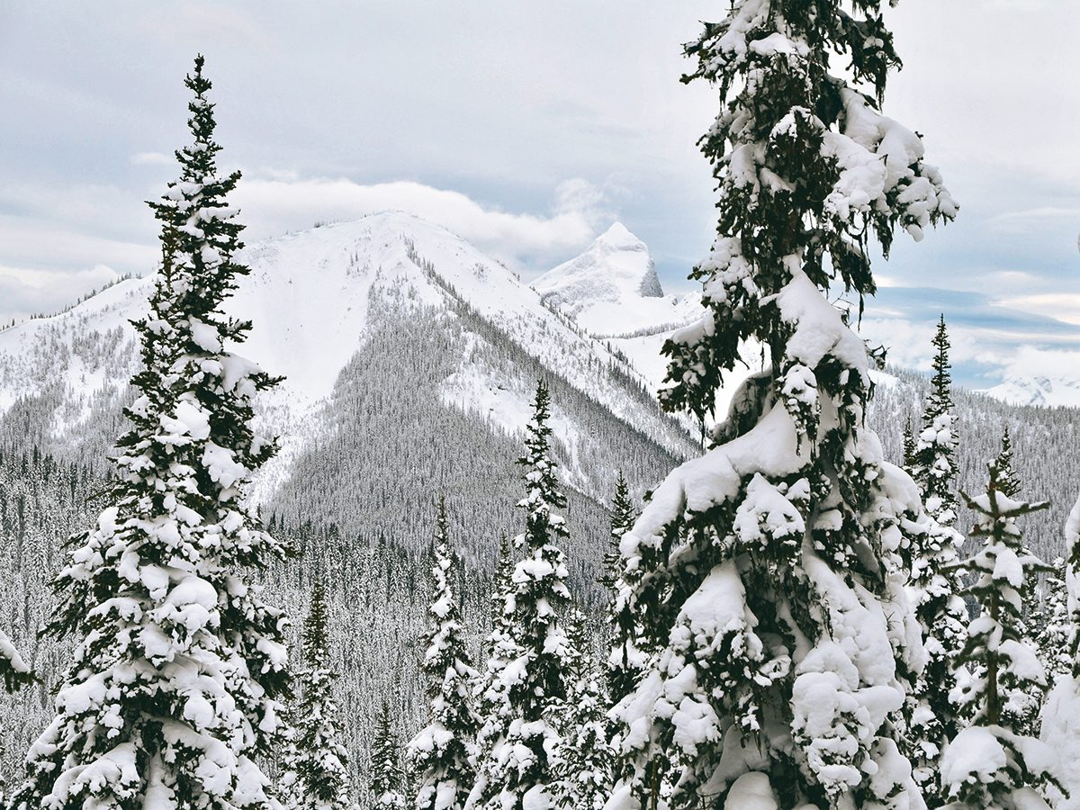 Canadian winter - North Cascade mountain range