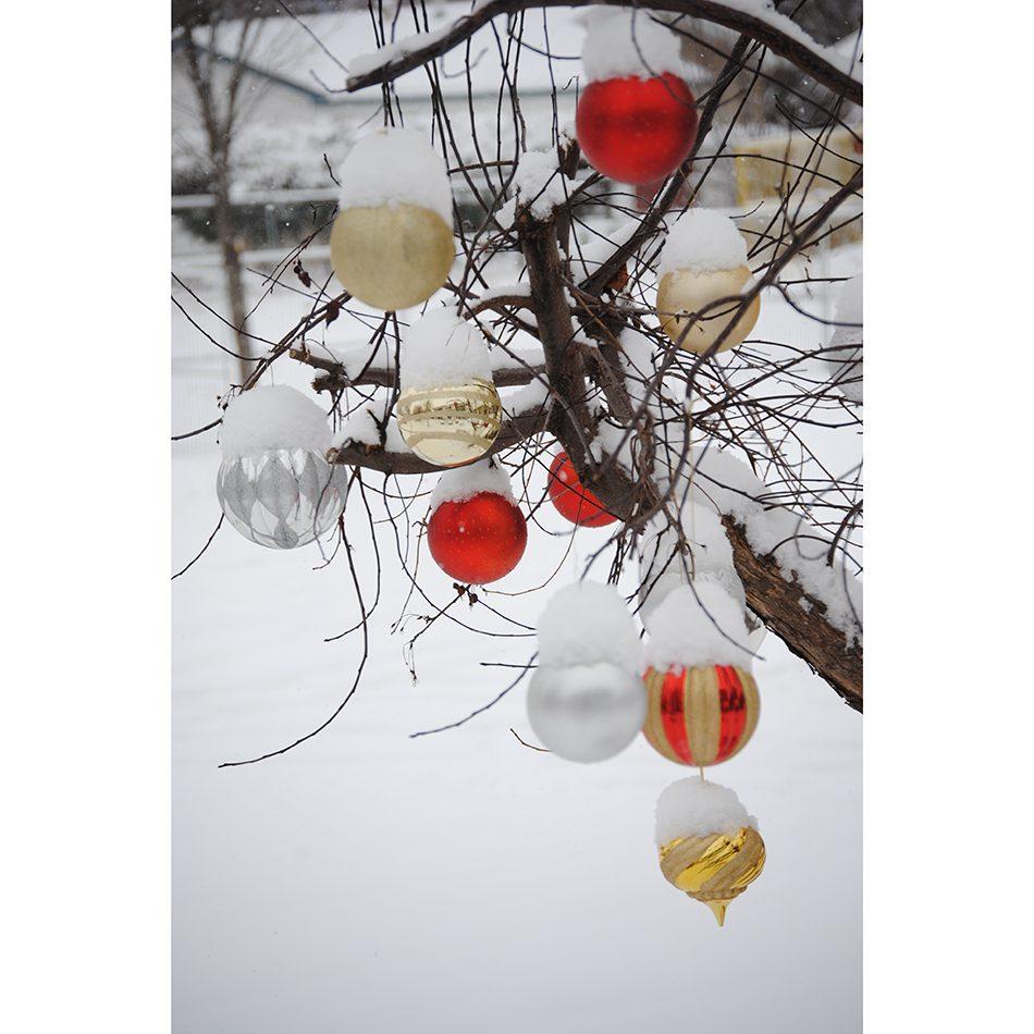 Deck the halls - outdoor tree decorations ornaments