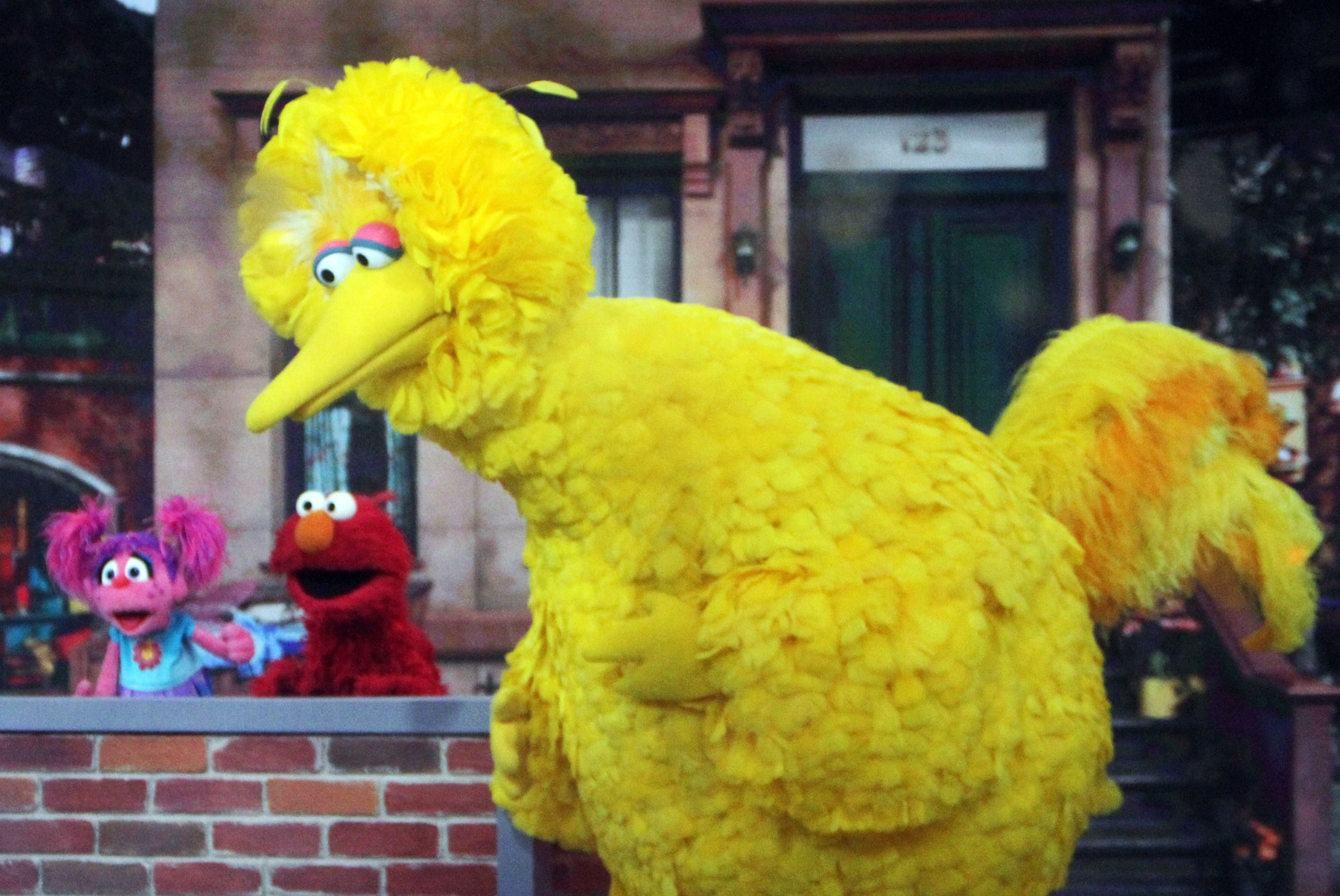 Mandatory Credit: Photo by MediaPunch/Shutterstock (9971118o) Abby Cadabby, Elmo and Big Bird 'Today' TV show, New York, USA - 08 Nov 2018
