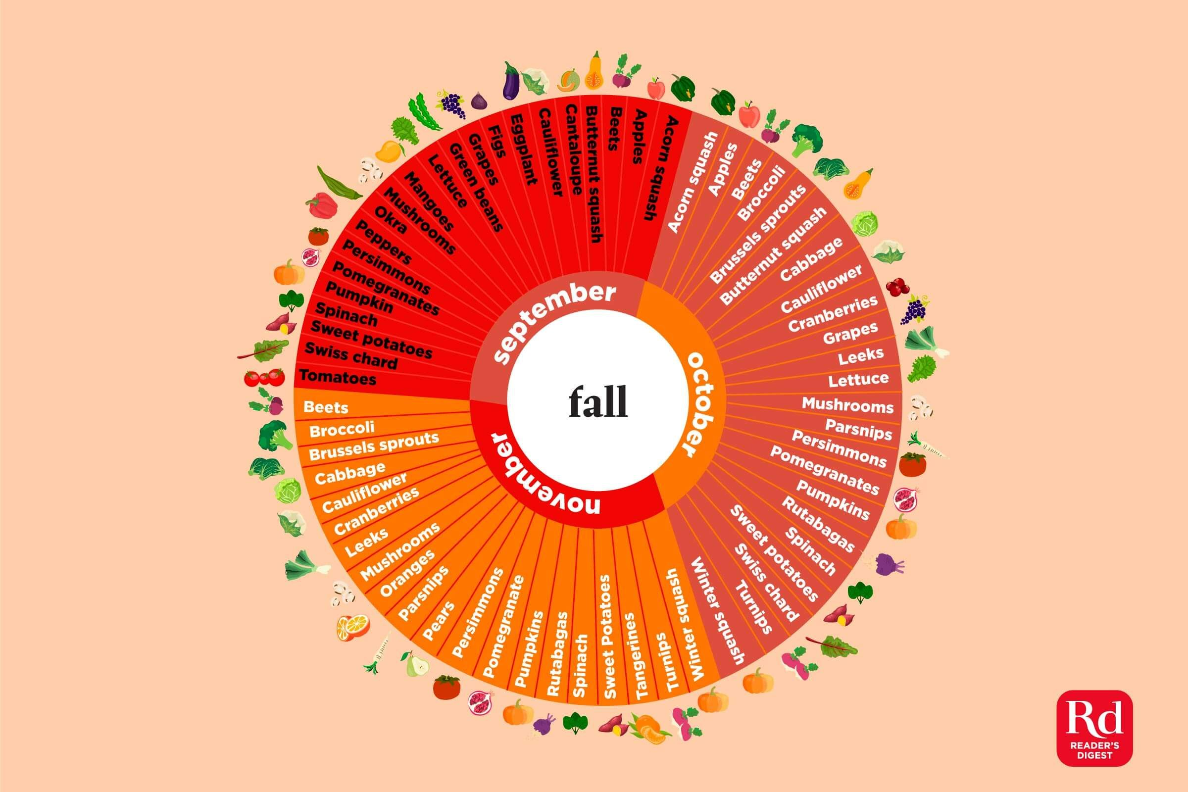 This-Infographic-Shows-the-Fruits-and-Vegetables-in-Season-Every-Month-of-the-Yea