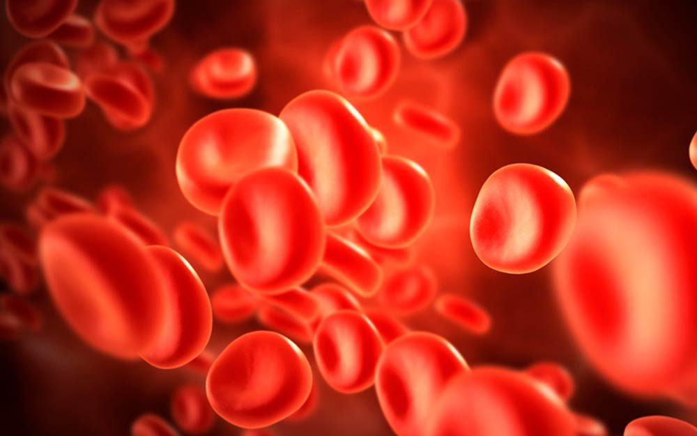 Reasons-Everyone-Should-Know-Their-Blood-Type