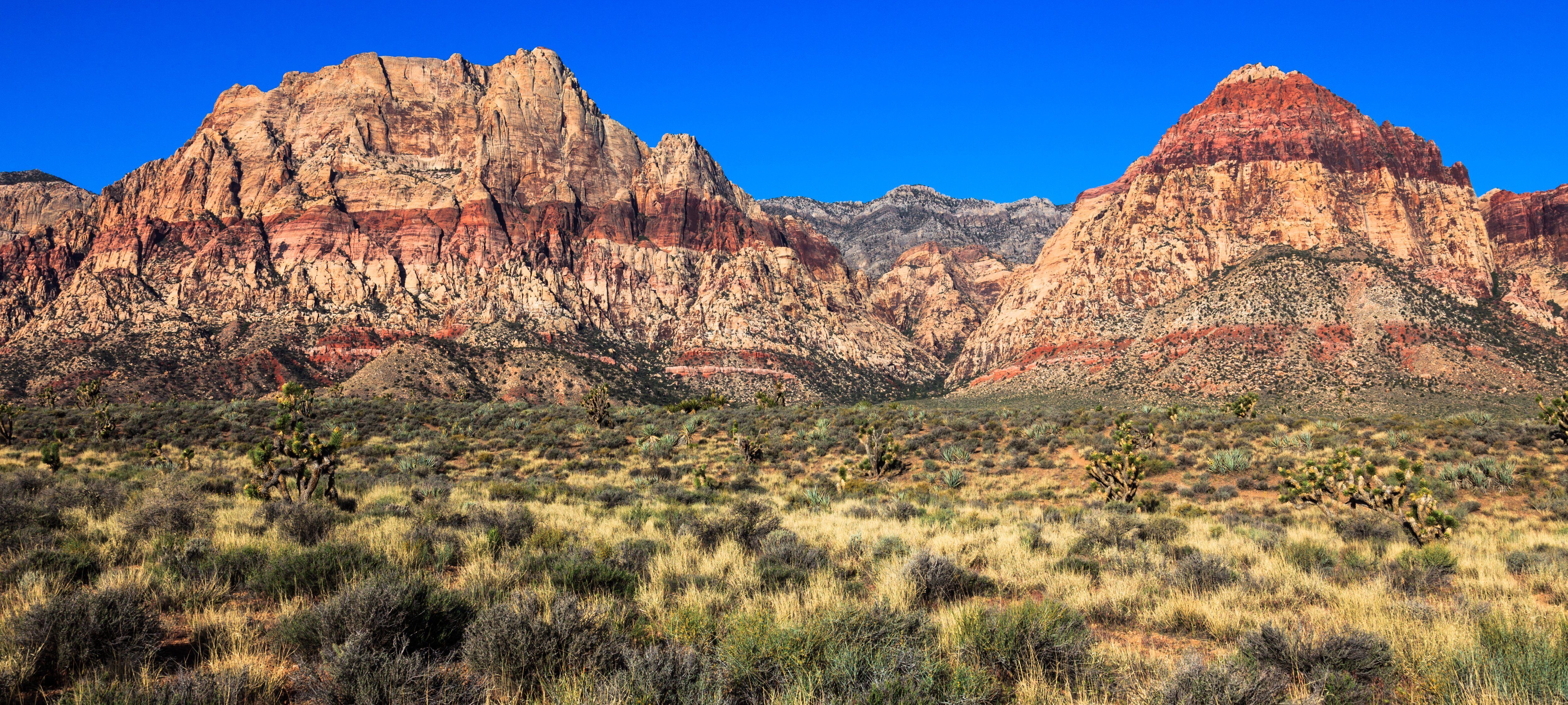Panoramic view of Red Rock Canyon Conservation Area, Nevada.