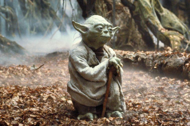 Yoda in Star Wars Episode V - The Empire Strikes Back (1980)