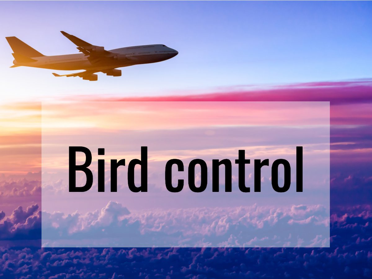 Aviation terms - what does bird control mean