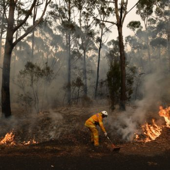 What the Australian Bushfires Mean for the Rest of the World